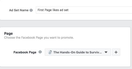 Opzione per scegliere quale pagina Facebook desideri promuovere
