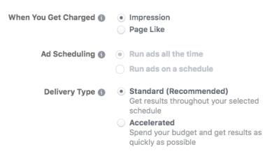 Avanzare le opzioni di budget quando si imposta un annuncio di Facebook