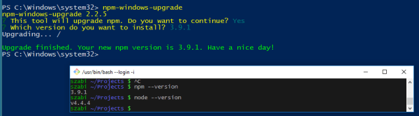Setting up Node.js on Windows 10   @RisingStack