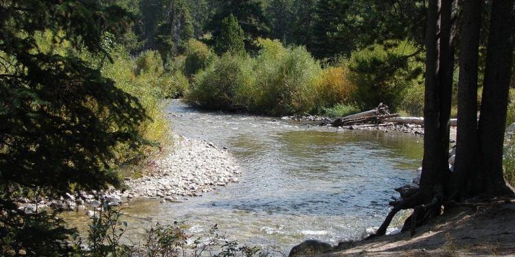 Basin Campground Montana
