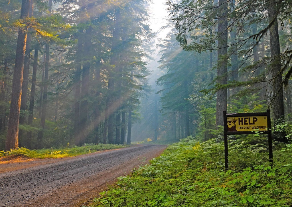 Boondocking in national forests