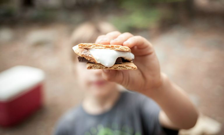 s'mores on a camping trip