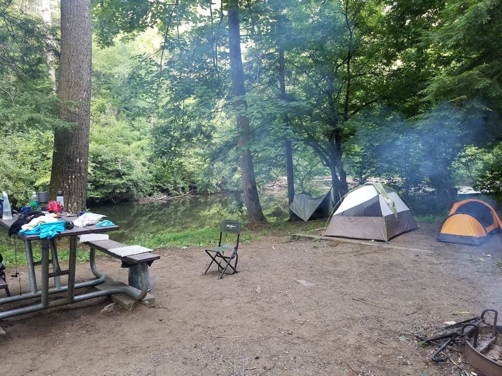 wooded, riverside campsite with multiple tents and a full picnic table at abrams creek campground