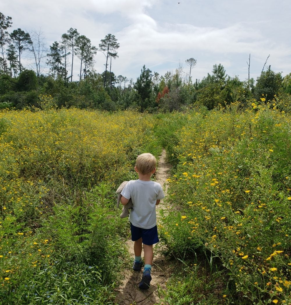 young boy facing away from camera as he walks path through bastrop field