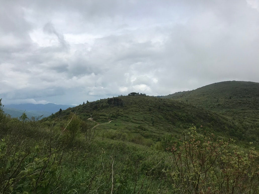a hilltop hiking trail in north carolina with grey skies above