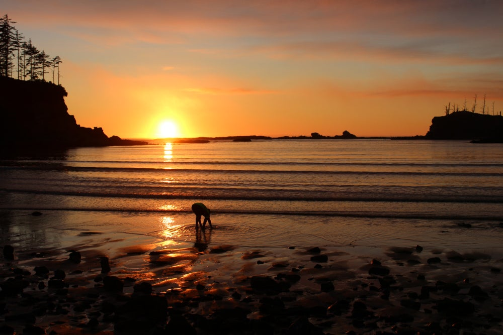 silhouette of person at sunset crouching on the beach to wet their hands in the water
