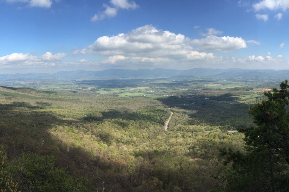 Panoramic view of the Shenandoah Valley from the top of a hill