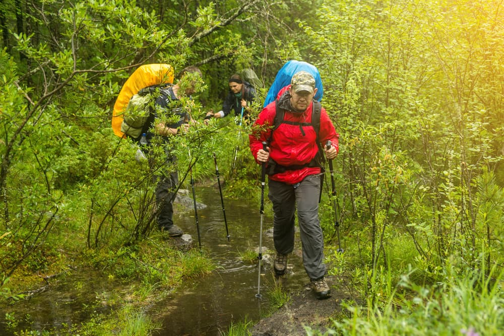 three brightly dressed backpackers hike through wet forest with rain gear in tow