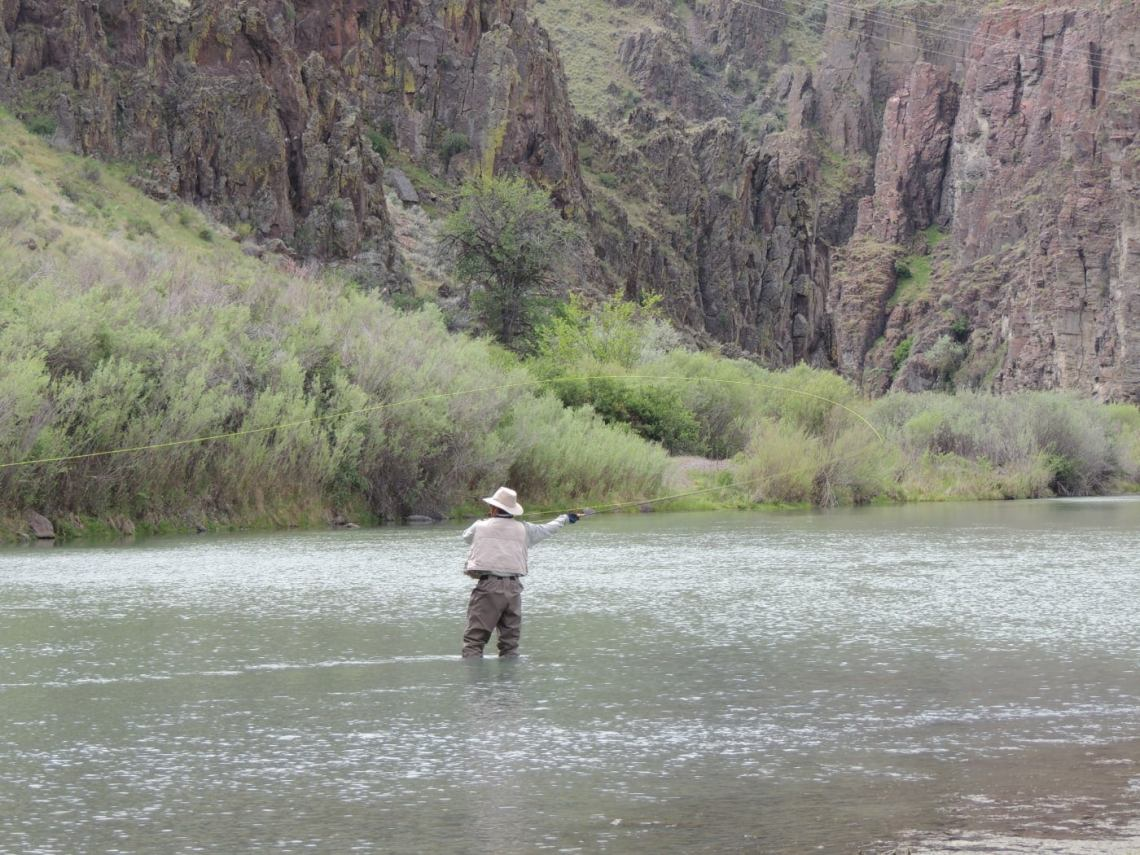 Man in a khaki hat and vest with green waders stands in a low river while fly fishing, behind him are green bushes and a large vertical rock face.