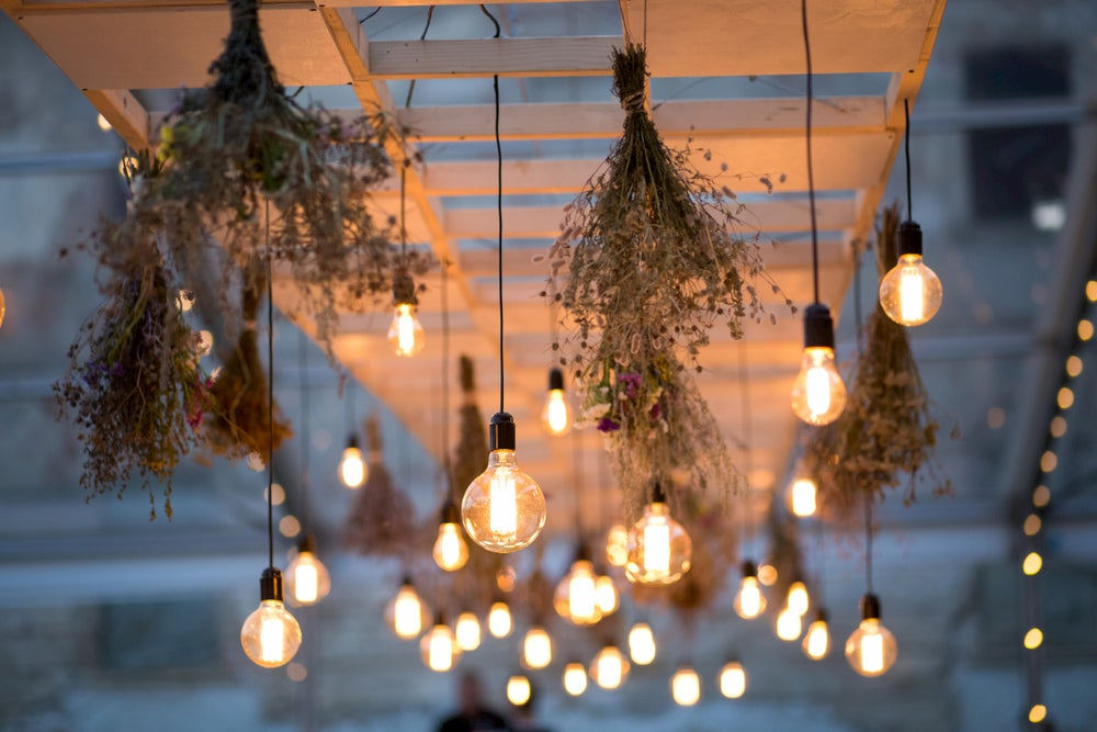 Lights and plants hanging from white ceiling outdoors