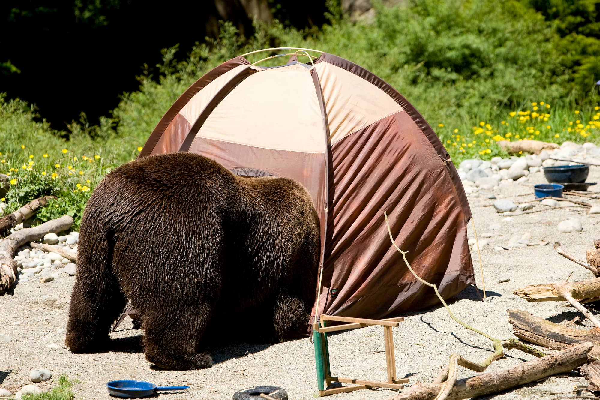 25 Ridiculous Camping Fails from Real Campers Just Like You