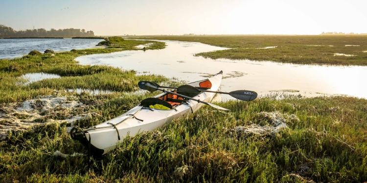 an oru kayak on a swamp at dusk