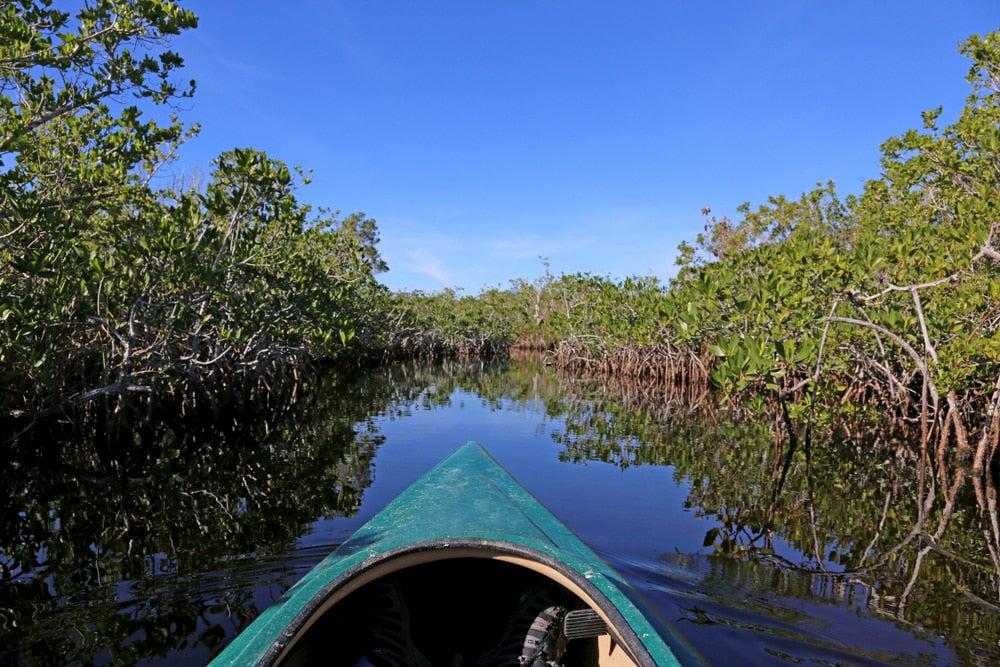 Kayak moving through Hell Bay.