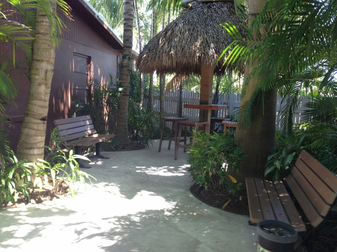 Palm trees and tiki hut surrounded by a terrace.