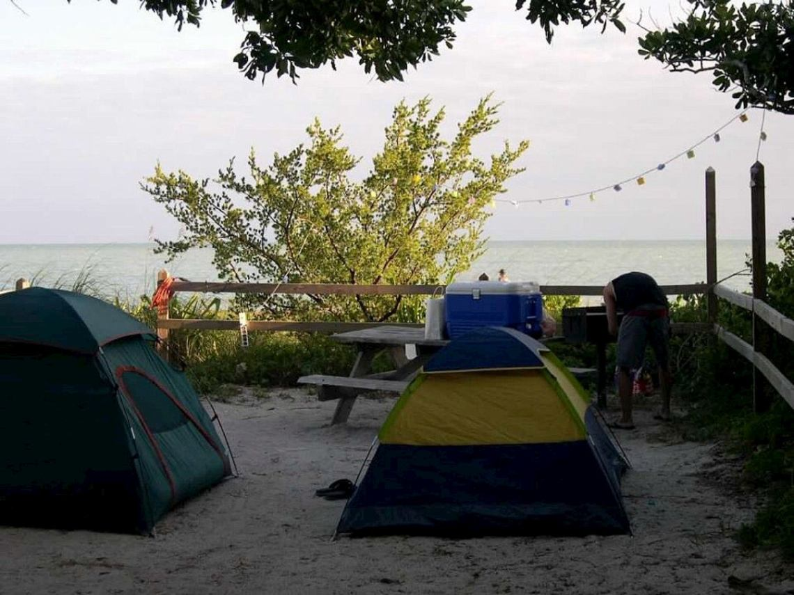 Tents and string lights set up beside the beach.