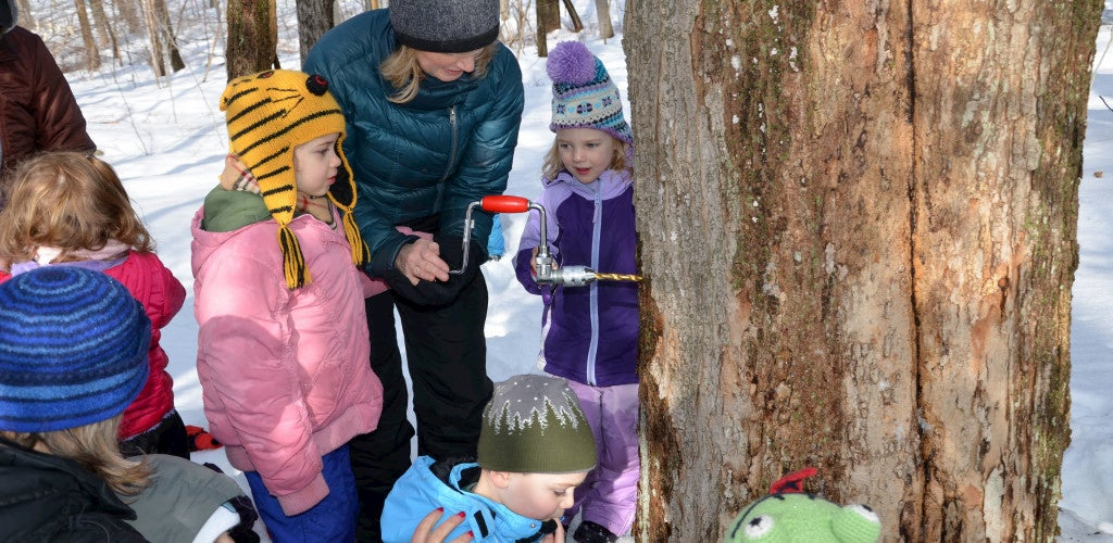 Children and their teacher outside in winter tapping a maple tree.