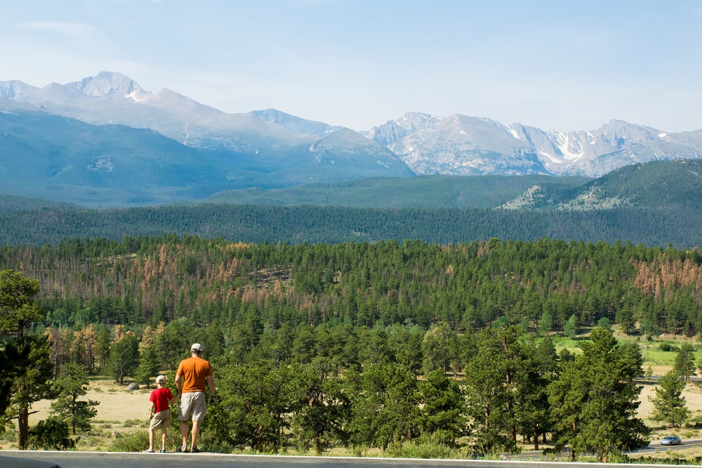 Father and son looking out at mountains and forest