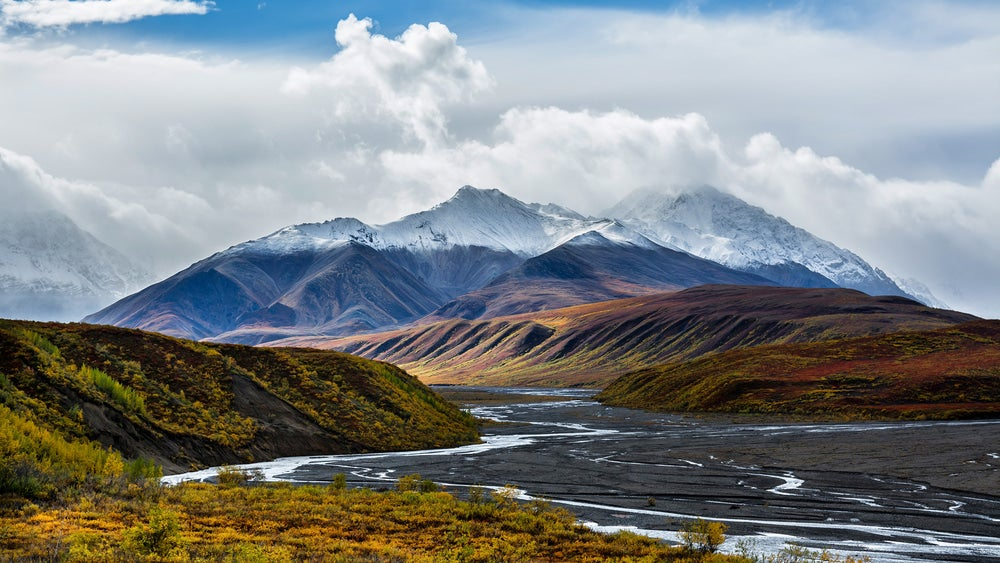 the tolkot river flowing through denali national park in alaska