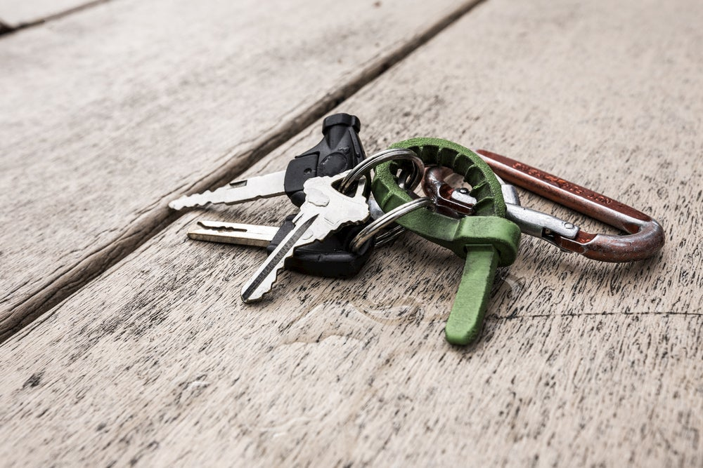 Keys clipped to a carabiner.