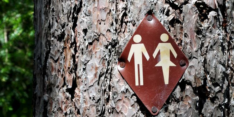 Bathroom sign on a large tree in the forest.