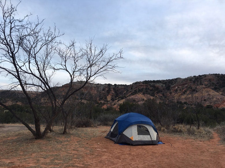 single blue tent next to bare tree in Texas' Palo Duro Canyon campsite, photo from a camper on The Dyrt