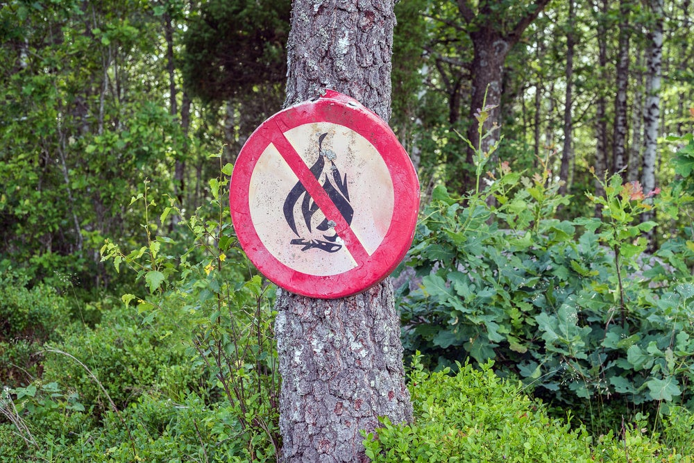 a sign banning fires nailed to a tree