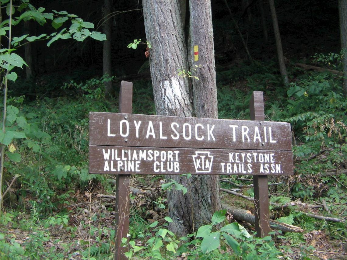 Loyalsock trailhead sign.