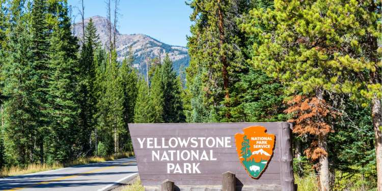 entrance road and sign for yellowstone national park