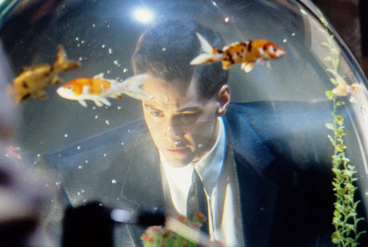 Johnny Mnemonic Fish
