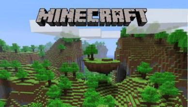 Adaptation sur grand écran du jeu indépendant Minecraft