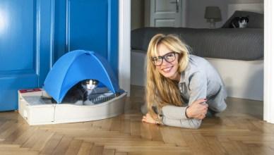 Découvrez la litière qui se nettoie automatiquement, Smart Kitty