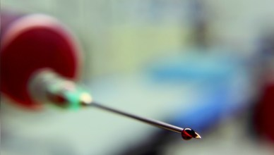 La fabrication de sang humain est en marche
