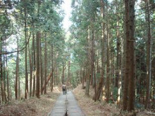 ゆーけーのお仕事日記-定光院への道