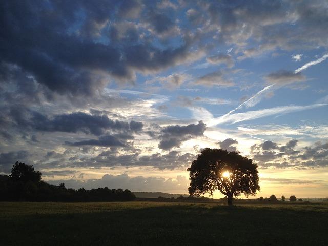 sunrise-430694_640.jpg