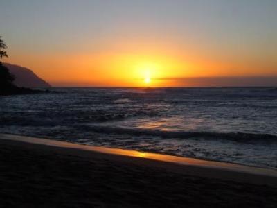 web kauai 20160015 (68)
