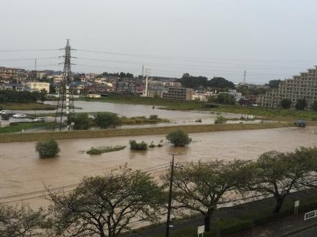 flood6514674.jpg