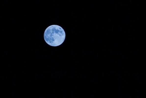 moon876.jpg