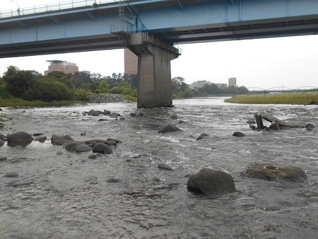 20180907中央大橋橋脚DSCN5004.jpg
