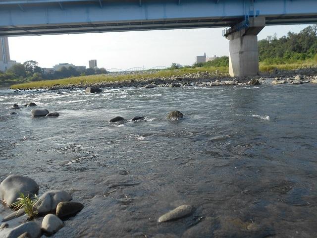 20180913中央大橋上流の荒瀬DSCN5027.jpg