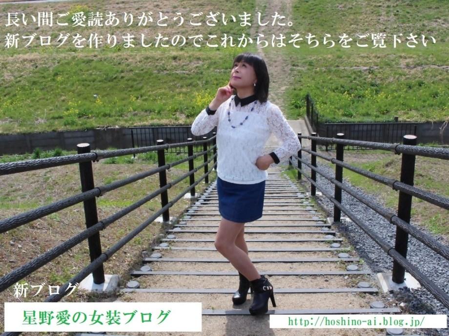 ニューブログ紹介B