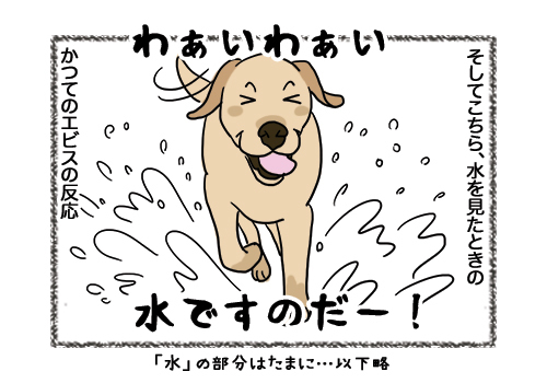 04022019_dog2.jpg