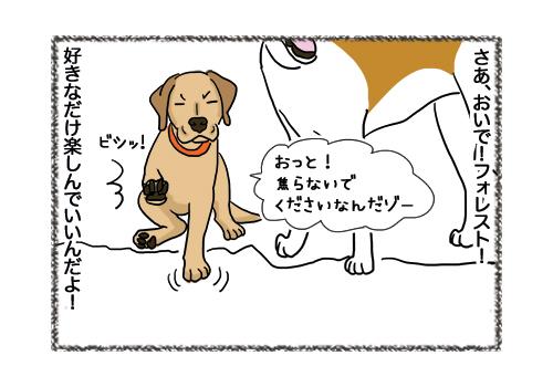 04022019_dog4.jpg