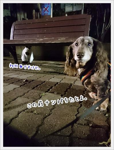 fc2_2019-02-21_03.jpg