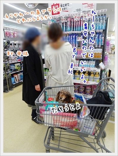 fc2_2019-05-14_01.jpg