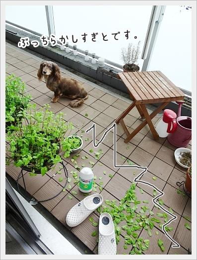 fc2_2019-07-09_02.jpg