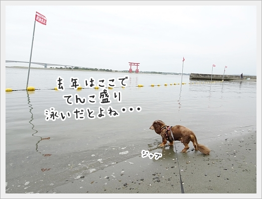 fc2_2019-07-18_04.jpg