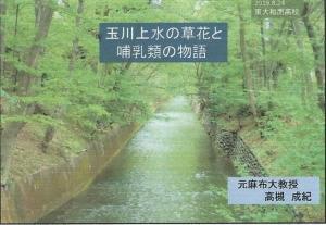 20190824南高玉川上水植物レズメ