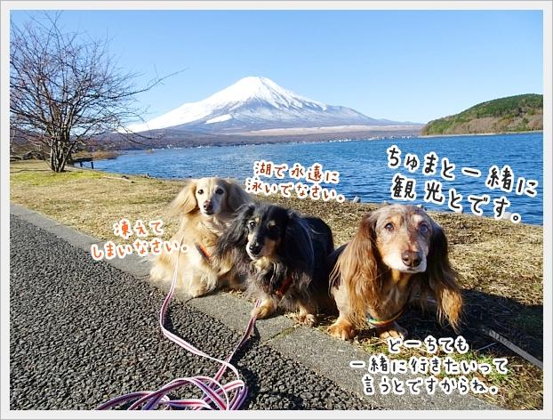 fc2_2019-12-03_03.jpg