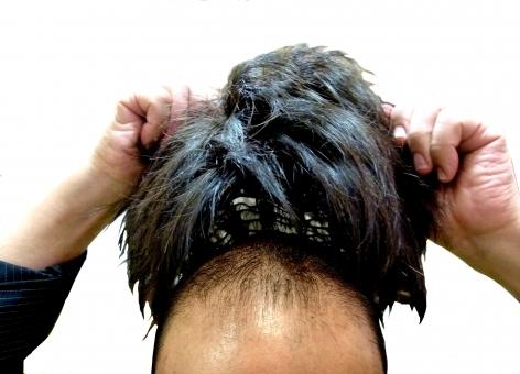 hair8775867.jpg