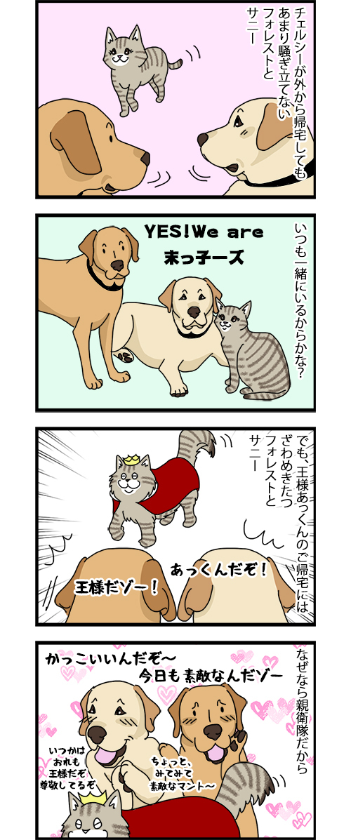 11062020_dogcomic1.jpg
